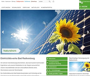Website www.ewerk-badradkersburg.at >>